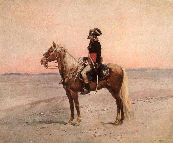 Horse「Napoleon I」:写真・画像(16)[壁紙.com]