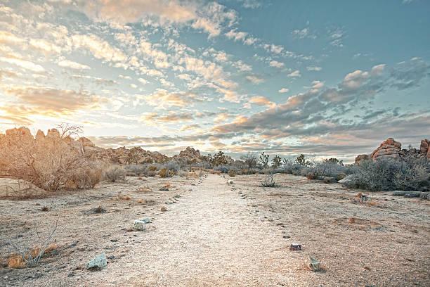 Desert path at sunset:スマホ壁紙(壁紙.com)