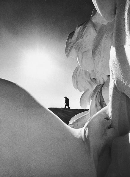 Snowdrift「Lone Walker」:写真・画像(15)[壁紙.com]