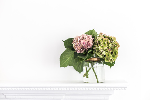 Mantelpiece「Hydrangea flowers in a glass vase on a mantelpiece」:スマホ壁紙(12)