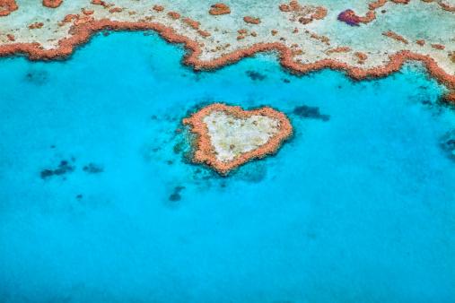 Queensland「Heart Reef」:スマホ壁紙(5)