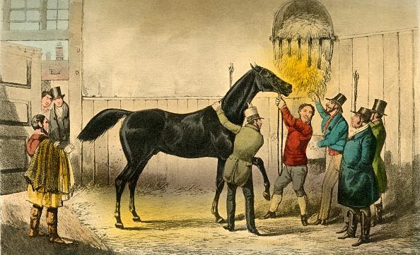 Horse「The Baron Vills His Wet 1」:写真・画像(0)[壁紙.com]