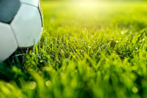 Soccer ball on green gras:スマホ壁紙(壁紙.com)