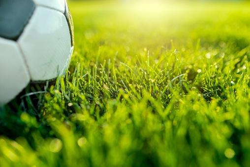 Stadium「Soccer ball on green gras」:スマホ壁紙(12)