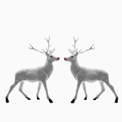 reindeer「Red Nosed Reindeer facing each other」:スマホ壁紙(4)