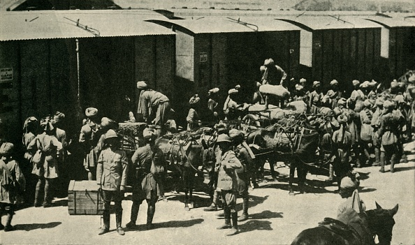 Horse「British And Indian Soldiers At Bombay」:写真・画像(4)[壁紙.com]