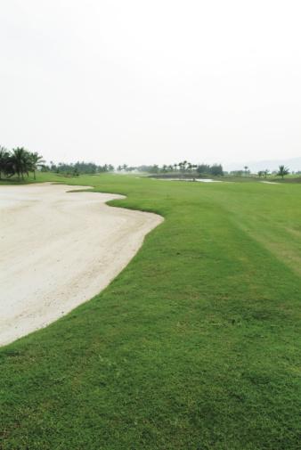 Sand Trap「Sand trap on golf course」:スマホ壁紙(4)