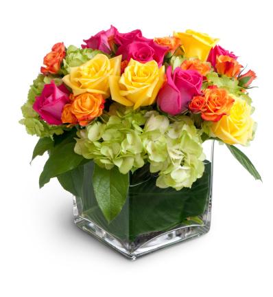 Hydrangea「Vibrant Floral Arrangement in Square Crystal Vase Isolated」:スマホ壁紙(11)