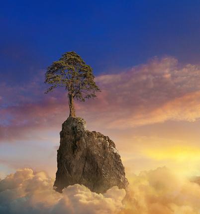 Spirituality「A Lone Mountain Tree At Sunset」:スマホ壁紙(8)