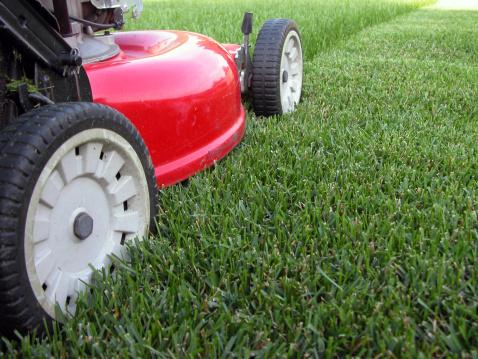 Gardening「Mowing the Grass」:スマホ壁紙(13)