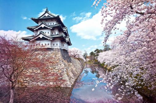 Travel「Hirosaki castle」:スマホ壁紙(4)