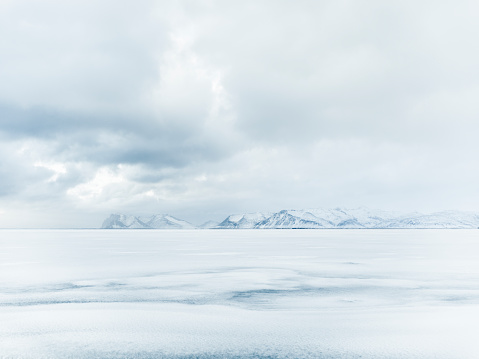 Cold Temperature「Arctic Solitude」:スマホ壁紙(1)