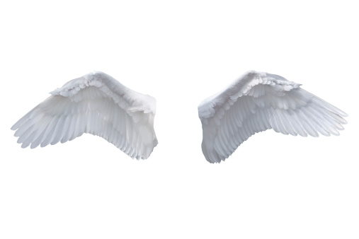 Spirituality「Isolated White Angel Wings」:スマホ壁紙(3)