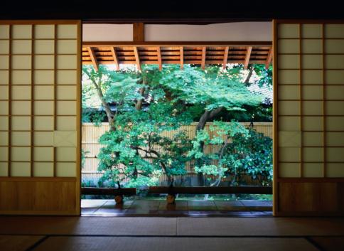 Deciduous tree「Tree Beyond Shoji Screens」:スマホ壁紙(12)