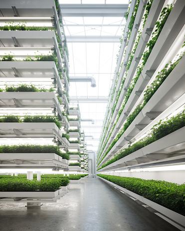 Intelligence「Vertical farm generated digitally inside a greenhouse」:スマホ壁紙(2)