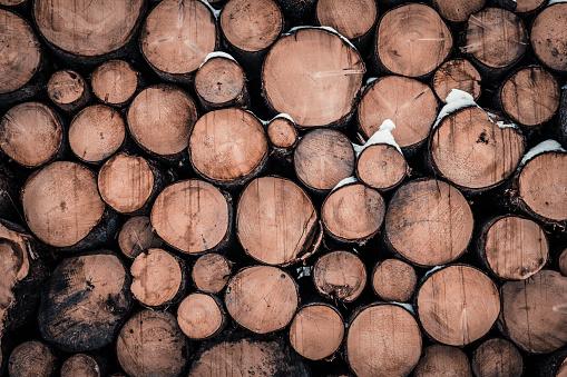 Pine Wood - Material「Wood pattern」:スマホ壁紙(13)