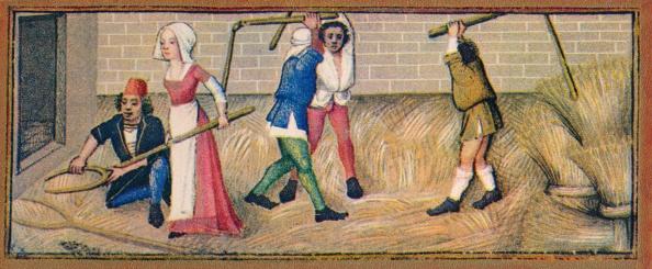 Circa 15th Century「July - Threshing」:写真・画像(13)[壁紙.com]