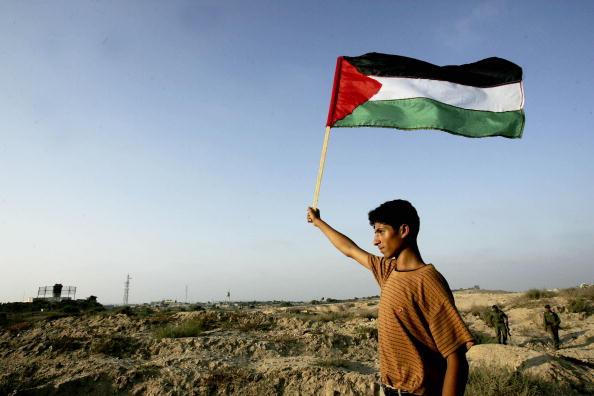 Patriotism「Palestinians Celebrate Israeli Pullout Near Jewish Settlement In  Khan Younis」:写真・画像(11)[壁紙.com]