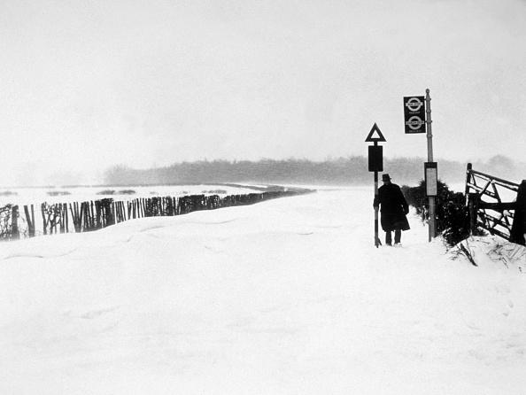 Snowdrift「Snow Scene」:写真・画像(8)[壁紙.com]