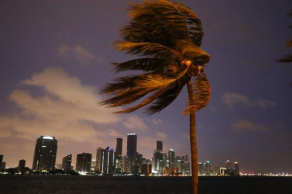 Miami「Massive Hurricane Irma Bears Down On Florida」:写真・画像(13)[壁紙.com]