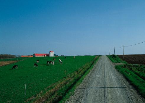 Hokkaido「Ranch and Road」:スマホ壁紙(1)