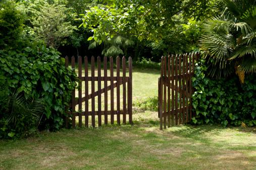 Plank - Timber「Wooden Fence」:スマホ壁紙(18)