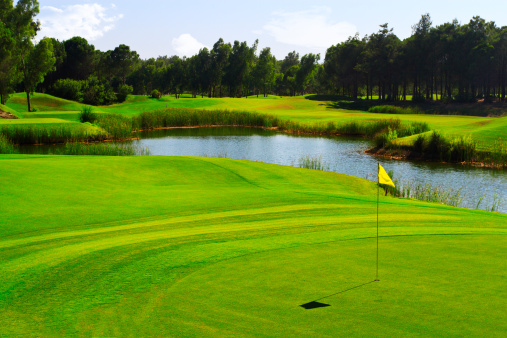 Sand Trap「Yellow flag on a lush green golf course with pond」:スマホ壁紙(15)