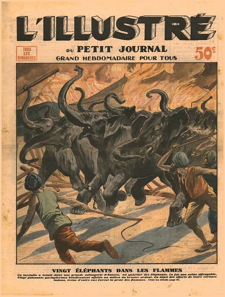 Flame「Twenty Elephants In The Flames」:写真・画像(18)[壁紙.com]