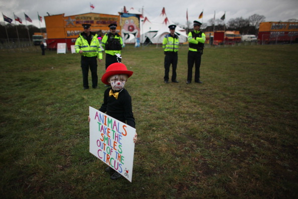 Circus Tent「Bobby Roberts Super Circus Rolls Into Town After Animal Cruelty Scandal」:写真・画像(3)[壁紙.com]