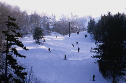 グリーン山脈「Skiing in Ripton, Vermont」:スマホ壁紙(1)