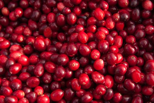 Cranberry「Fresh Cranberry background」:スマホ壁紙(11)
