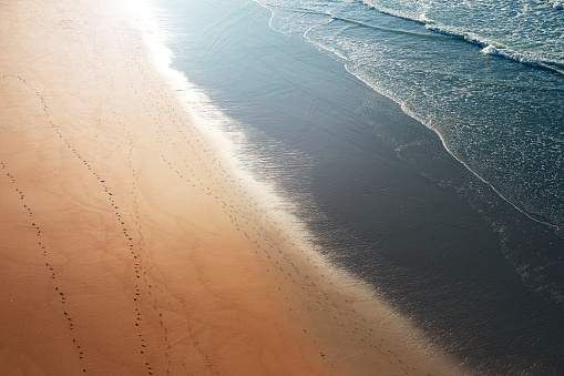 Identity「Tracks in the sand along the sea shore」:スマホ壁紙(15)