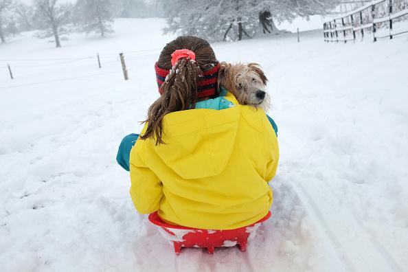 Yellow「Heavy Snow Hits The UK」:写真・画像(4)[壁紙.com]