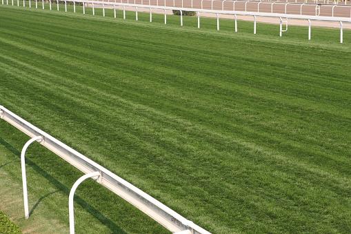 Equestrian Event「Horse Racing Track」:スマホ壁紙(11)