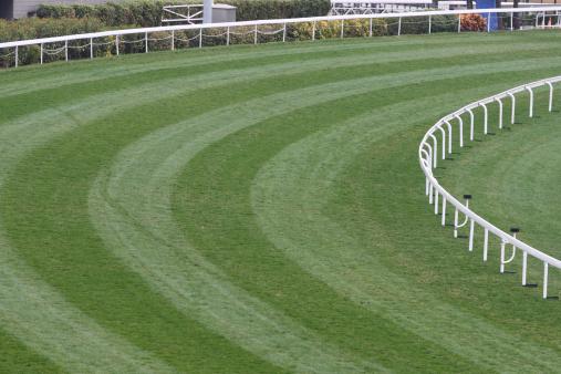 Horse「Horse Racing Track」:スマホ壁紙(6)