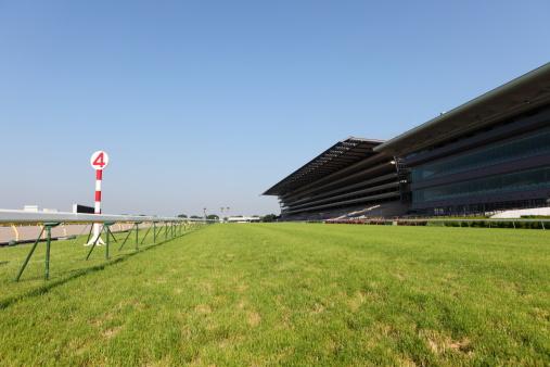 Racehorse「Horse Racing Track」:スマホ壁紙(2)