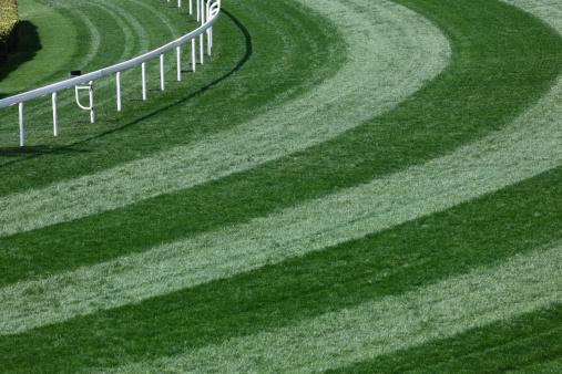 Horse「Horse Racing Track」:スマホ壁紙(17)