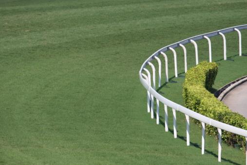 Horse「Horse Racing Track」:スマホ壁紙(11)