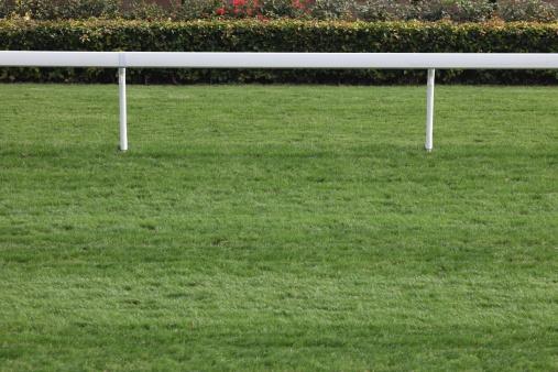 Racehorse「Horse Racing Track」:スマホ壁紙(11)