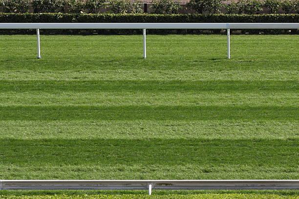 Horse Racing Track:スマホ壁紙(壁紙.com)