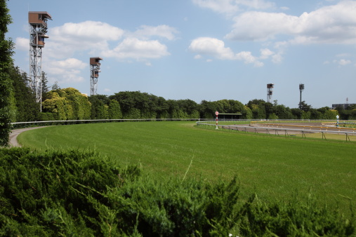 Horse「Horse Racing Track」:スマホ壁紙(7)