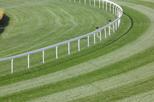Horse「Horse Racing Track」:スマホ壁紙(2)
