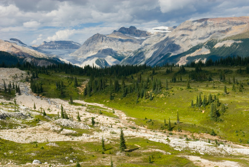 Yoho National Park「Waputik Mountains from the Iceline Trail, Yoho National Park, British Columbia, Canada」:スマホ壁紙(18)