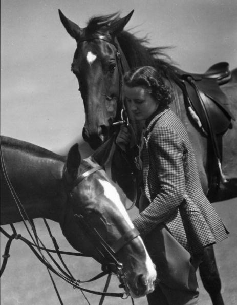 Racehorse「Equestrian Pursuit」:写真・画像(2)[壁紙.com]