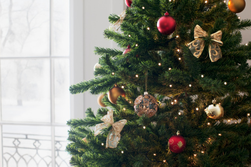 Tied Bow「Christmas ornaments on tree」:スマホ壁紙(17)