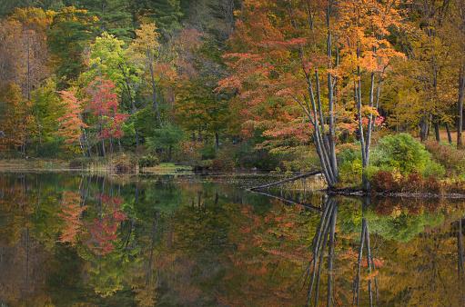 グリーン山脈「Vermont fall foliage reflection」:スマホ壁紙(18)