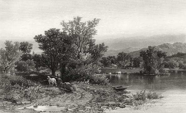 Tree「Housatonic River」:写真・画像(0)[壁紙.com]