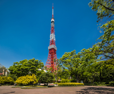 Tokyo Tower「View of the Tokyo Tower」:スマホ壁紙(18)