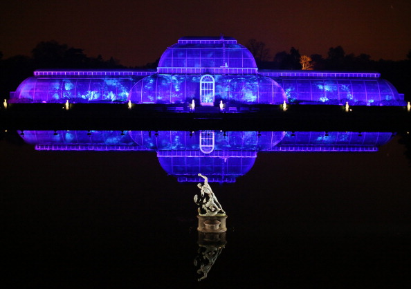 Greenhouse「Illuminated Trail Lights Up Kew Gardens For Christmas」:写真・画像(10)[壁紙.com]