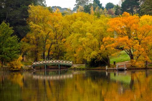 Footbridge「Lake Daylesford in autumn」:スマホ壁紙(12)